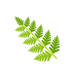 Fern Leaf Icon