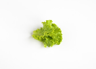 Organic food. green salad leaves isoladen on white background