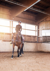 Poster Horseback riding Young woman doing dressage practice with her horse