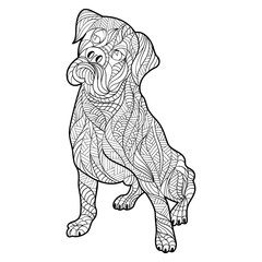 Vector monochrome hand drawn zentagle illustration of boxer dog.