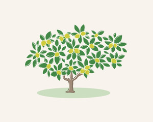 The image of a lemon tree on a light background