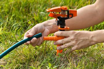 hands installing sprinkler for irrigation of lawn