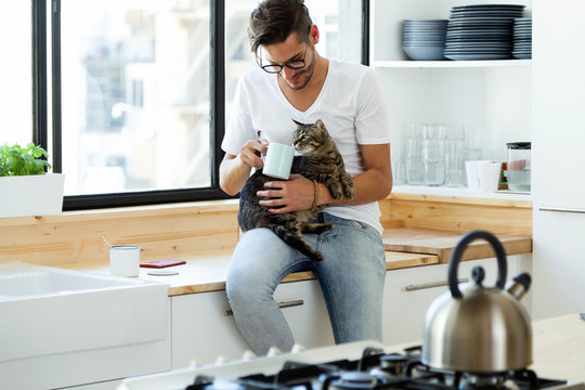 Handsome young man playing with cat in the kitchen.