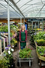 Female florist standing with garden trolley