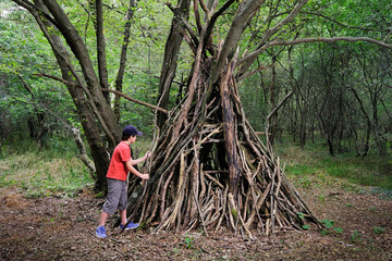 cabane forêt tipi construction enfant aventurier jeu garçon bo Wall mural
