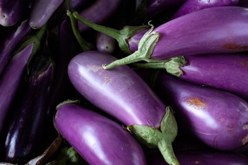Fresh Picked Purple Eggplant at Farmers Market