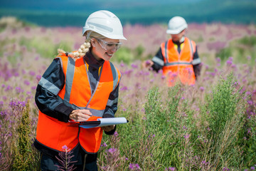 Researching recultivated field