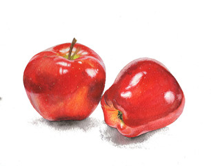 watercolor painting illustration isolated apples object design element drawing