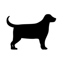 cute dog isolated icon design, vector illustration  graphic