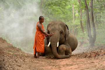 monk and elephant