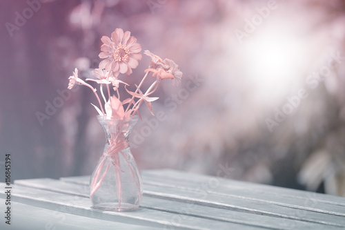 Flowers In Shades Of Soft Sweet In Glass Vases Stock Photo And