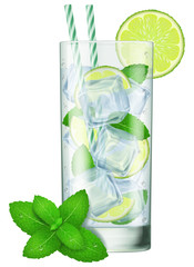 A glass of Mojito with mint leaves. Vector illustration.
