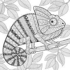 Chameleon in zentangle style. Adult antistress coloring page. Black and white hand drawn doodle for coloring book