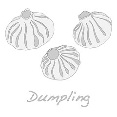 Dumpling vector illustration.