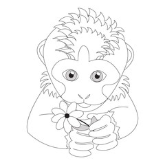 Monkey holding a flower. Coloring. Print for cards, children's books, clothes