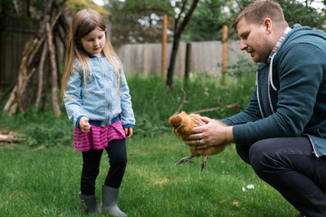 Male adult holding chicken and small girl looking