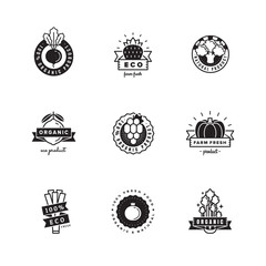 Organic product logo vector set. Hipster and vintage design.