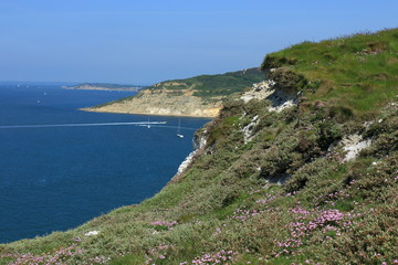 Chalk cliffs overlooking Alum Bay