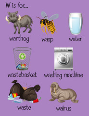 Many words begin with letter W