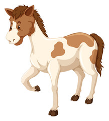 Horse with brown and white fur