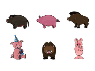 bear illustration design collection