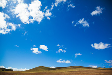 Canvas Prints Hill sunny steppe and hills