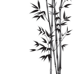 Ink paint bamboo bush. Card with black bamboo plants isolated on white background. Decorative bamboo branches. Vector illustration.