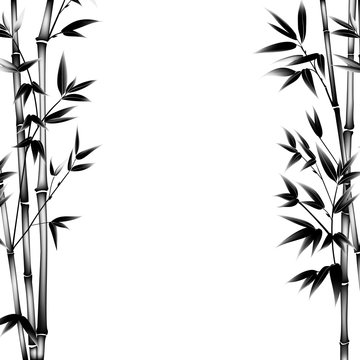 Ink paint bamboo bush. Decorative bamboo branches. Card with black bamboo plants isolated on white background. Vector illustration.