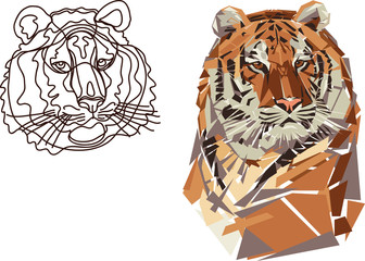 tiger, portrait, black, colored, stylized, line, line drawing, geometric pattern
