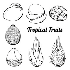 Tropical fruits set, vector drawing collection