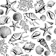 Seamless black-white pattern with seashells