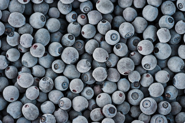 frozen blueberries covered by frost
