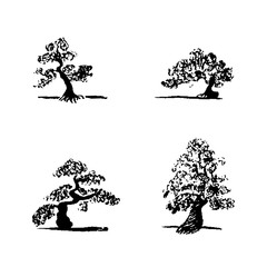 Set of hand drawing sketch four bonsai trees on white background