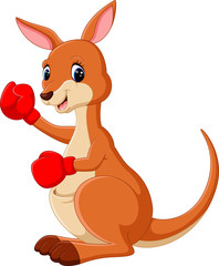 illustration of cute Kangaroo boxing