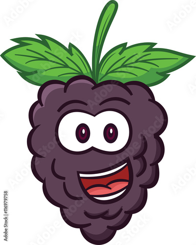 quotblackberry fruit cartoonquot stock image and royaltyfree