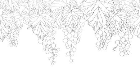 Seamless pattern with hand drawn bunch of grapes