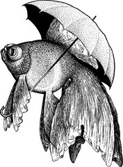 Vintage picture goldfish fish
