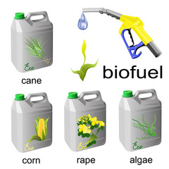 Cans with biofuel and fuel pump nozzle. Colored hand drawn vector illustration of biofuel sources on white background