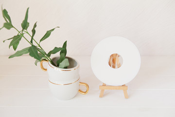 Green branches with leaves in cup and CD, DVD on wooden easel. S