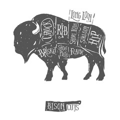 Vintage butcher cuts of bison buffalo scheme diagram