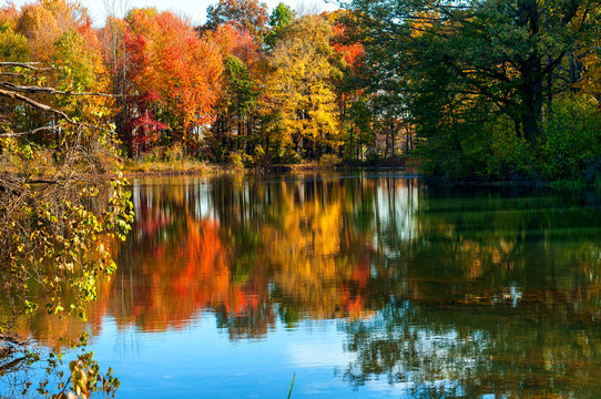 Serene pond reflecting autumn colors