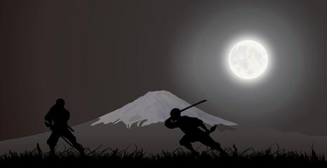 Japanese assassin, ninja, fighting, Fujiyama