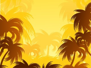 Landscape with palm trees.
