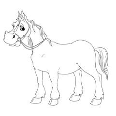 Funny cartoon character horse. Vector isolated coloring book.