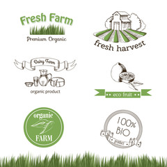 Set of stickers and logos for organic products and fresh farm. Vector drawing in the graphic style. Sketch