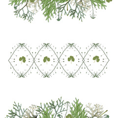 Decorative frame from different green leaves