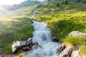 Wildbach inmitten einer Almwiese