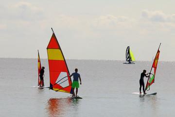 Viele Windsurfer, ruhige See,bunt