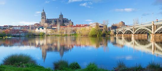 In de dag Monument Salamanca - The Cathedral and bridge Puente Enrique Estevan Avda and the Rio Tormes river.