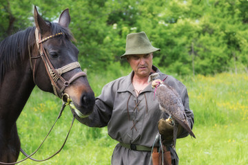 Falconer in traditional clothing with peregrine falcon and horse